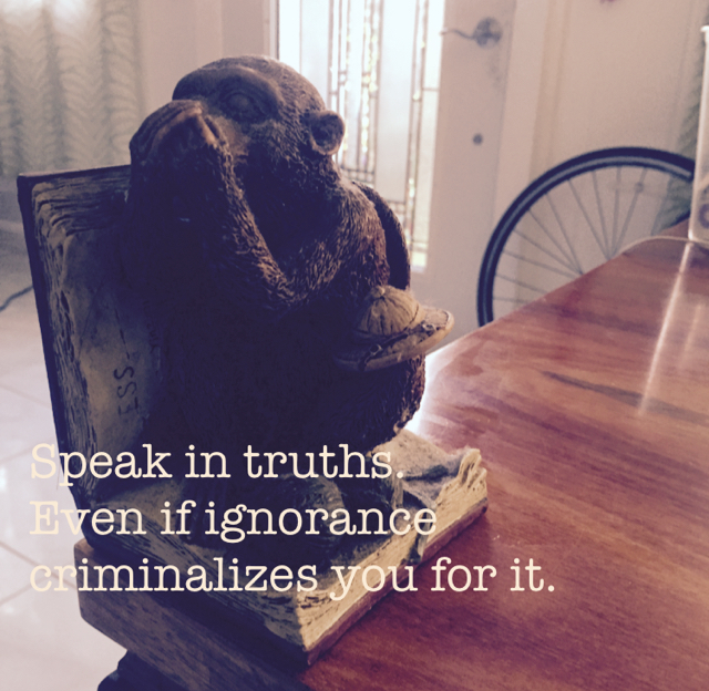 Speak in truths.  Even if ignorance criminalizes you for it.