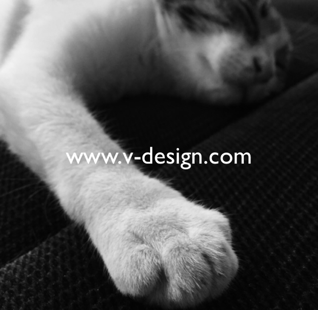www.v-design.com