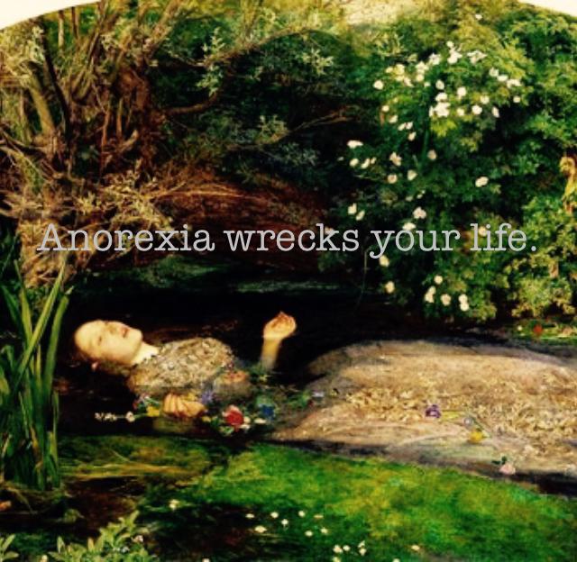 Anorexia wrecks your life.