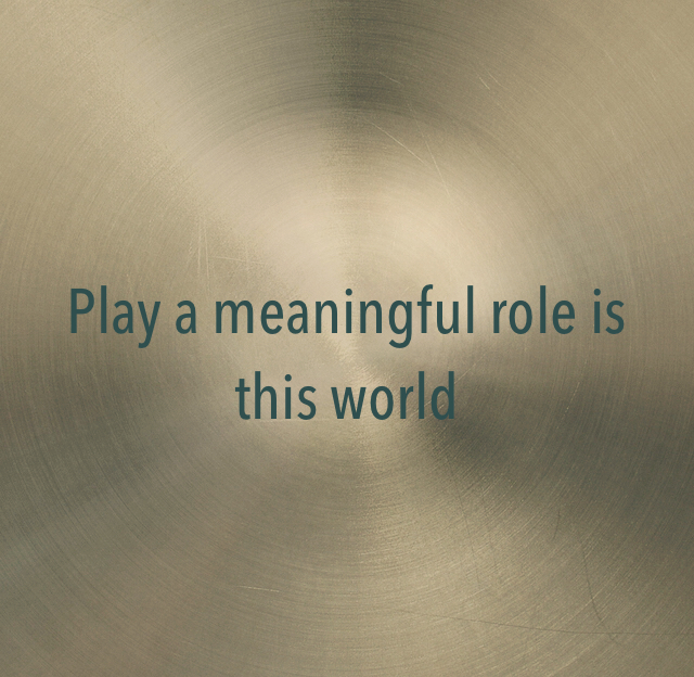 Play a meaningful role is this world