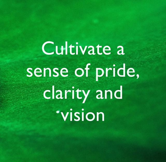 Cultivate a sense of pride, clarity and vision