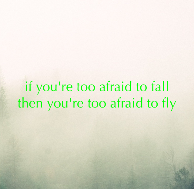 if you're too afraid to fall then you're too afraid to fly