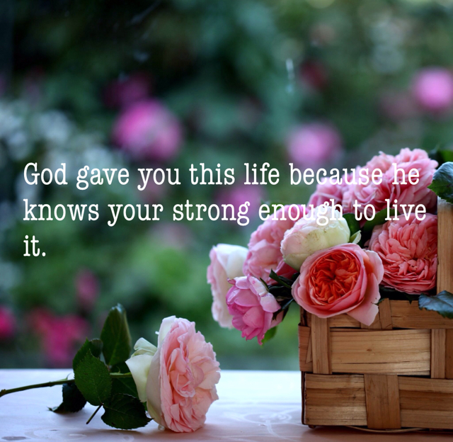 God gave you this life because he knows your strong enough to live it.
