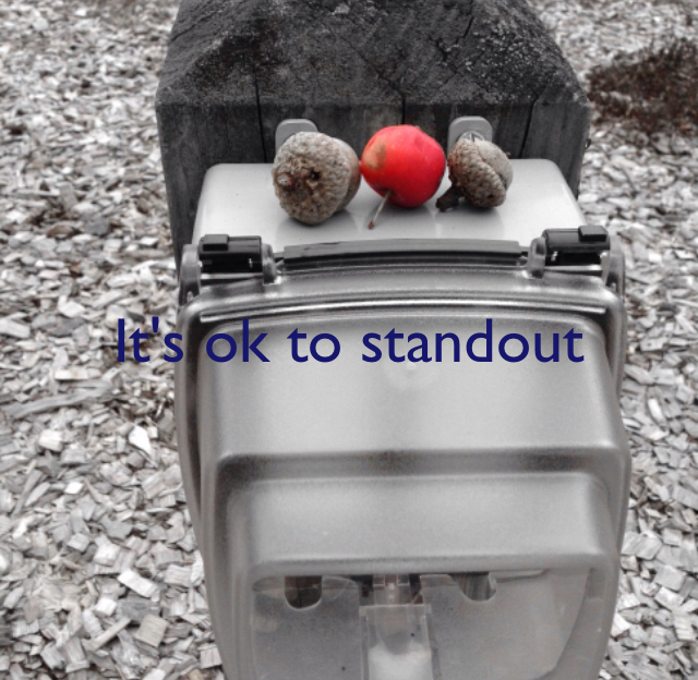 It's ok to standout
