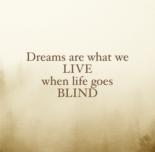 Dreams are what we LIVE when life goes BLIND