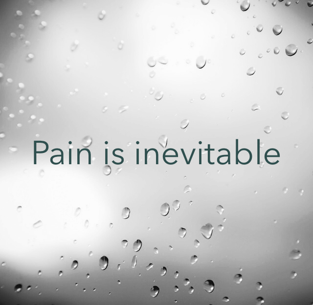 Pain is inevitable