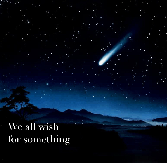 We all wish  for something