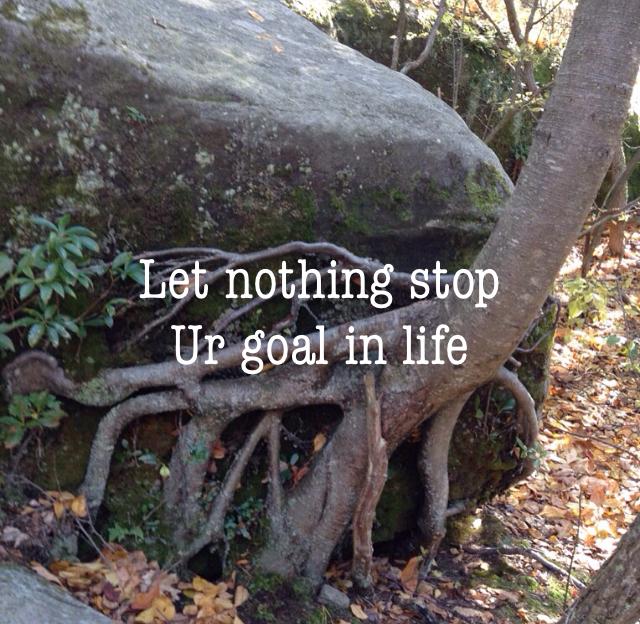 Let nothing stop Ur goal in life