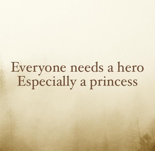 Everyone needs a hero Especially a princess
