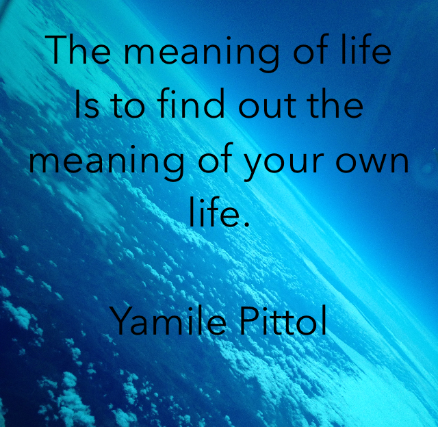 The meaning of life Is to find out the meaning of your own life.  Yamile Pittol
