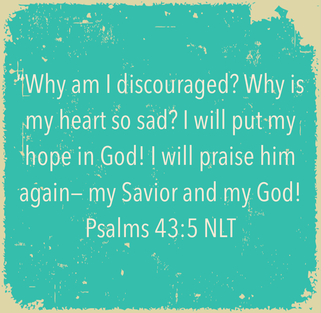 """Why am I discouraged? Why is my heart so sad? I will put my hope in God! I will praise him again— my Savior and my God! ‭‭Psalms‬ ‭43:5‬ ‭NLT‬‬"
