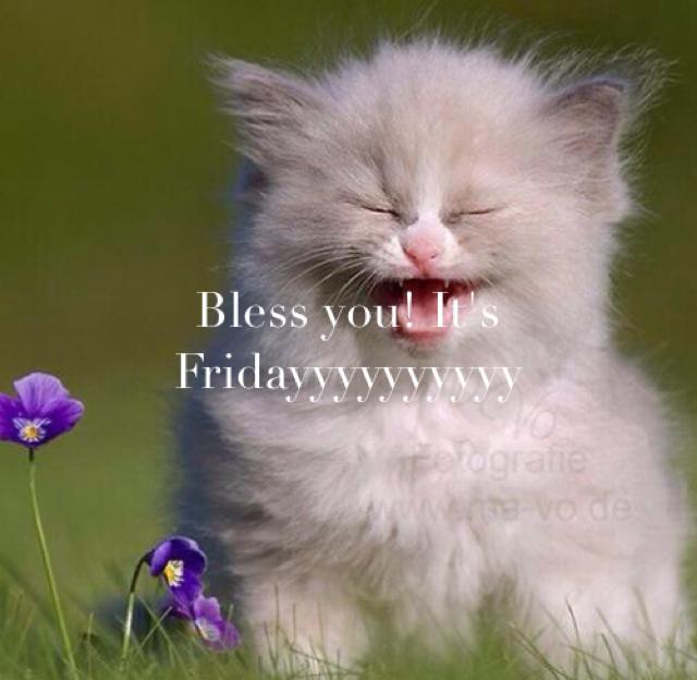 Bless you! It's Fridayyyyyyyyyy