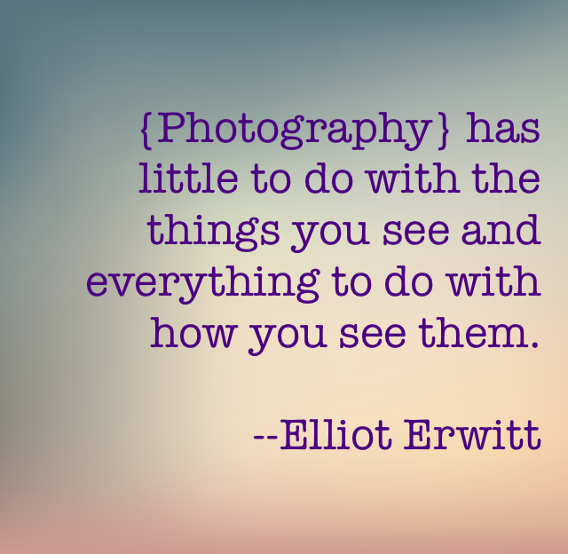 {Photography} has little to do with the things you see and everything to do with how you see them.  --Elliot Erwitt