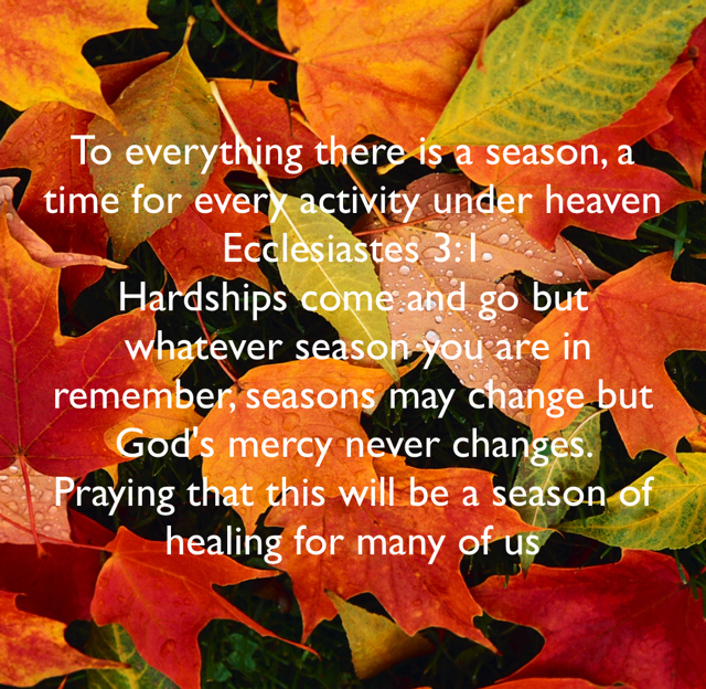 To everything there is a season, a time for every activity under heaven Ecclesiastes 3:1 Hardships come and go but  whatever season you are in remember, seasons may change but God's mercy never changes.  Praying that this will be a season of healing for many of us