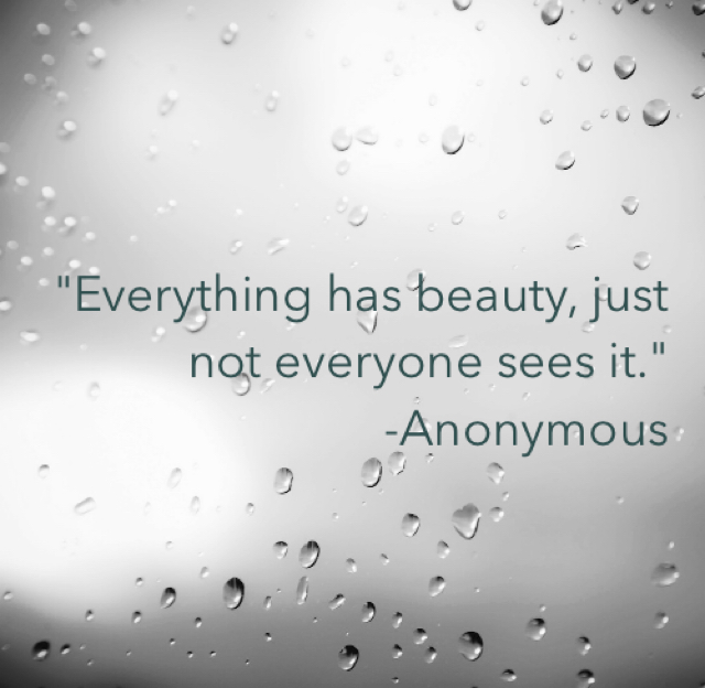 """Everything has beauty, just not everyone sees it."" -Anonymous"