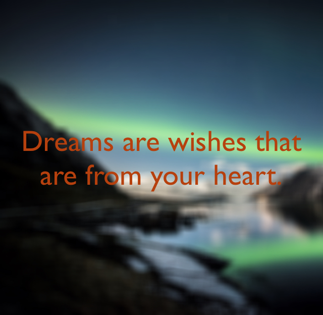 Dreams are wishes that are from your heart.