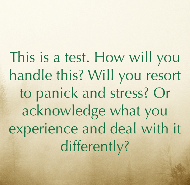This is a test. How will you handle this? Will you resort to panick and stress? Or acknowledge what you experience and deal with it differently?