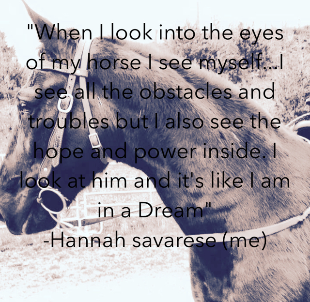 """""""When I look into the eyes of my horse I see myself...I see all the obstacles and troubles but I also see the hope and power inside. I look at him and it's like I am in a Dream""""  -Hannah savarese (me)"""