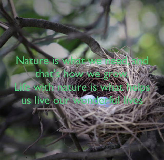 Nature is what we need, and that's how we grow. Life with nature is what helps us live our wonderful lives