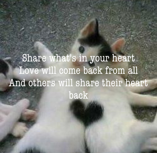Share what's in your heart Love will come back from all And others will share their heart back