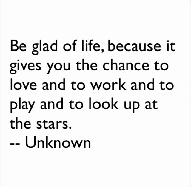 Be glad of life, because it gives you the chance to love and to work and to play and to look up at the stars.  -- Unknown