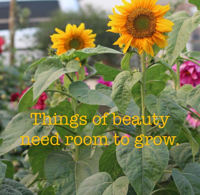 Things of beauty need room to grow.