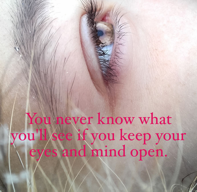 You never know what you'll see if you keep your eyes and mind open.