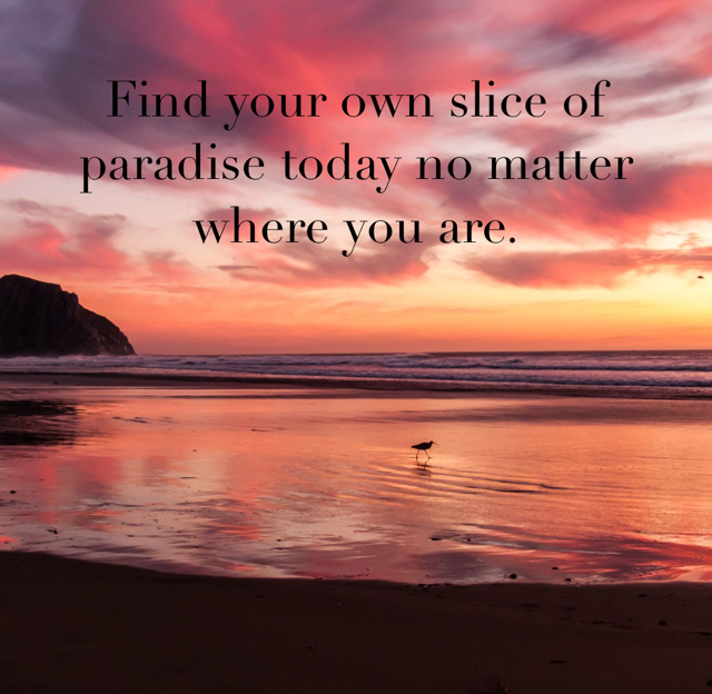 Find your own slice of paradise today no matter where you are.
