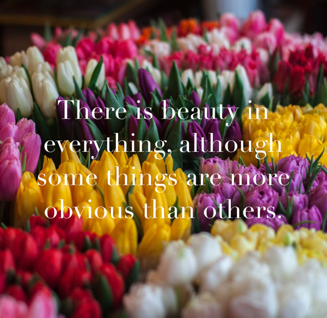 There is beauty in everything, although some things are more obvious than others.