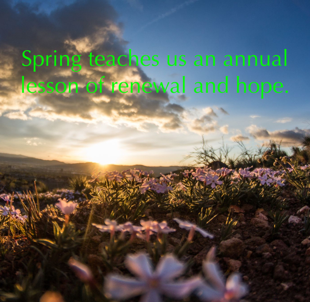 Spring teaches us an annual lesson of renewal and hope.
