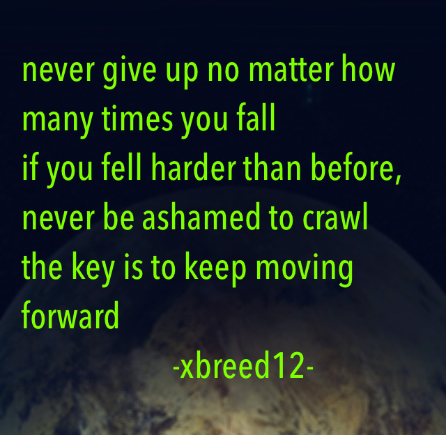 never give up no matter how many times you fall if you fell harder than before, never be ashamed to crawl the key is to keep moving forward                        -xbreed12-