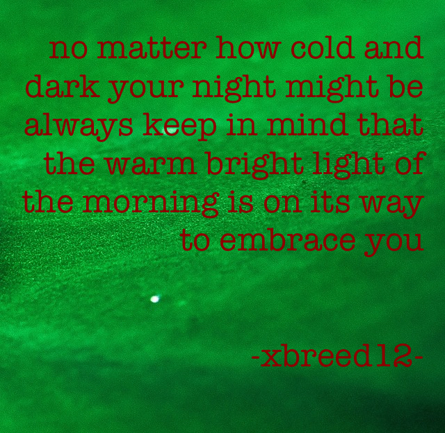 no matter how cold and dark your night might be always keep in mind that the warm bright light of the morning is on its way to embrace you                                 -xbreed12-