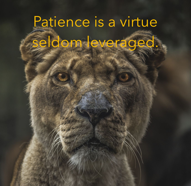 Patience is a virtue seldom leveraged.