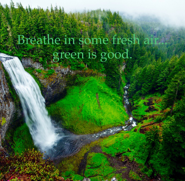 Breathe in some fresh air... green is good.