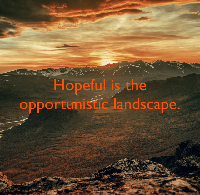 Hopeful is the opportunistic landscape.