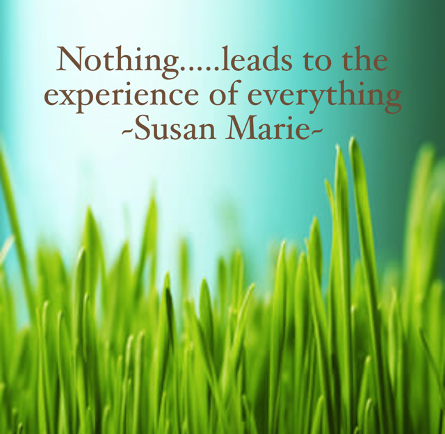 Nothing.....leads to the experience of everything  ~Susan Marie~
