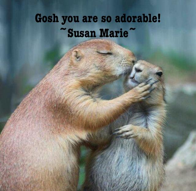 Gosh you are so adorable! ~Susan Marie~