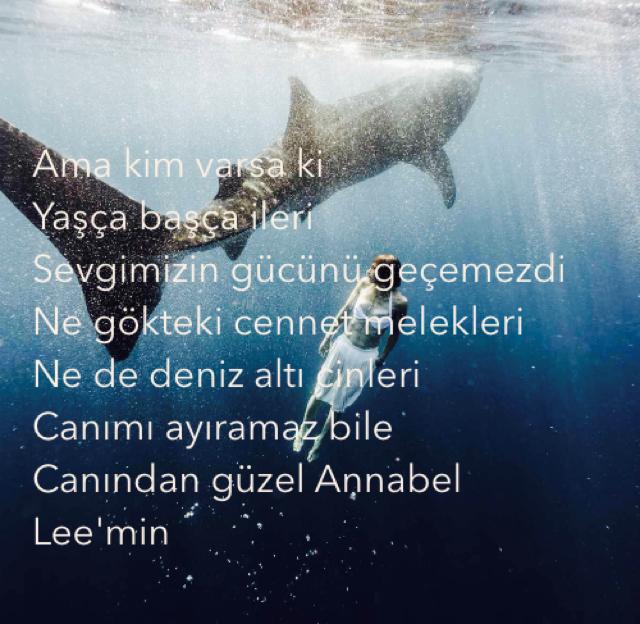Ama kim varsa ki Yaşça başça ileri Sevgimizin gücünü geçemezdi Ne gökteki cennet melekleri Ne de deniz altı cinleri Canımı ayıramaz bile Canından güzel Annabel Lee'min