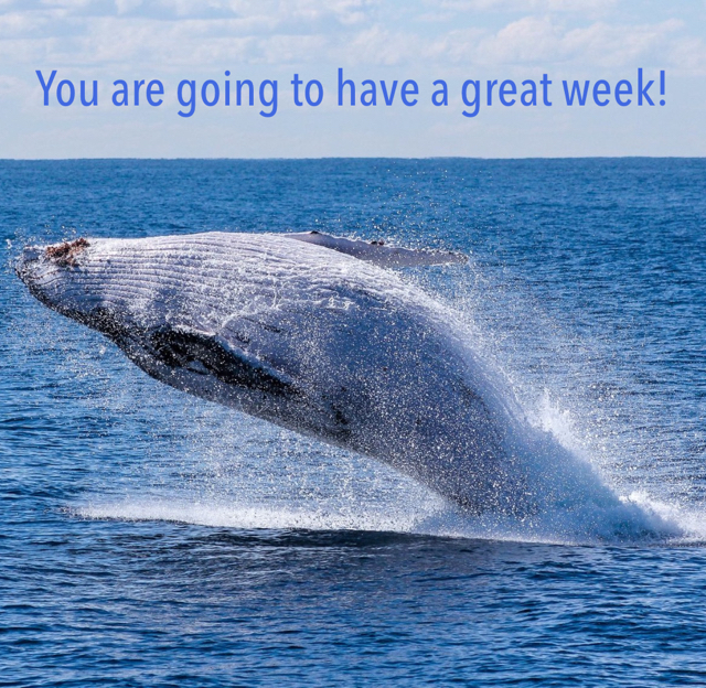 You are going to have a great week!