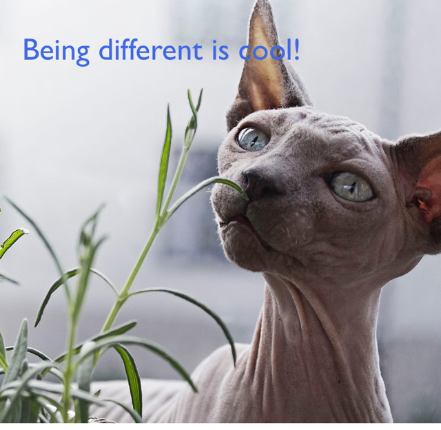 Being different is cool!