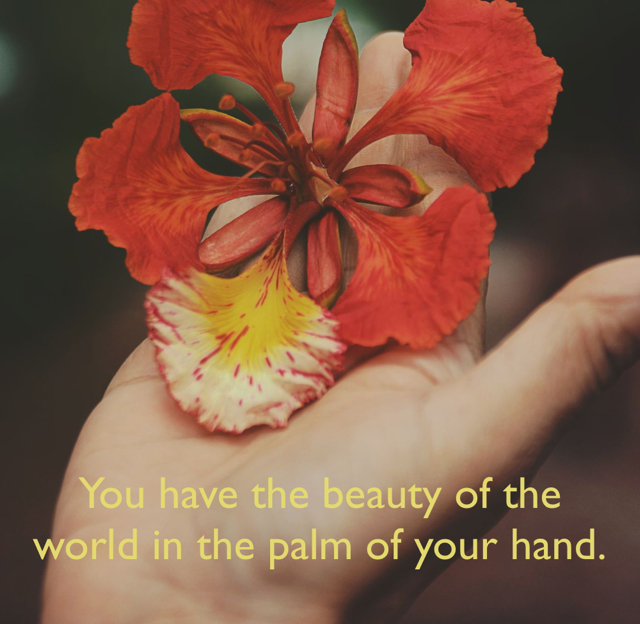 You have the beauty of the world in the palm of your hand.