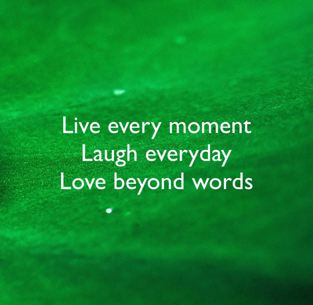 Live every moment Laugh everyday Love beyond words