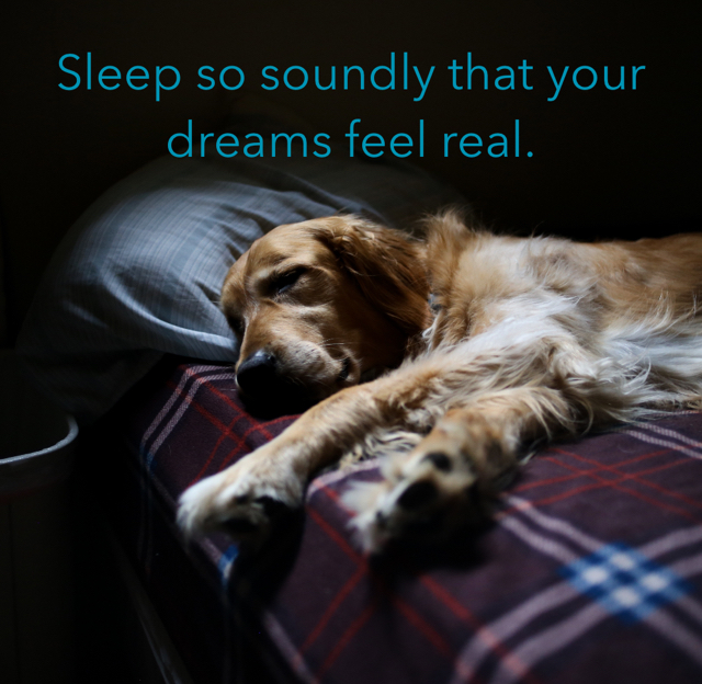 Sleep so soundly that your dreams feel real.
