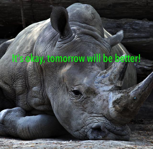 It's okay, tomorrow will be better!