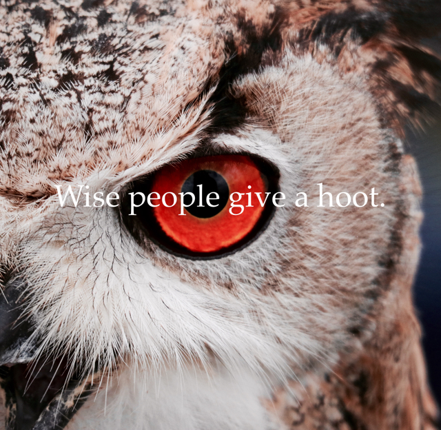 Wise people give a hoot.