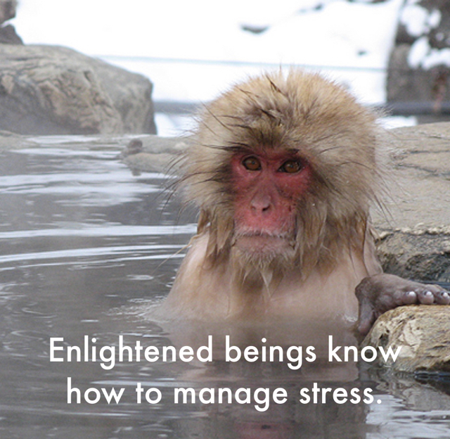 Enlightened beings know how to manage stress.