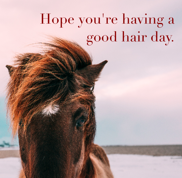 Hope you're having a good hair day.