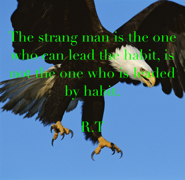 The strang man is the one who can lead the habit, is not the one who is leaded by habit. R.T
