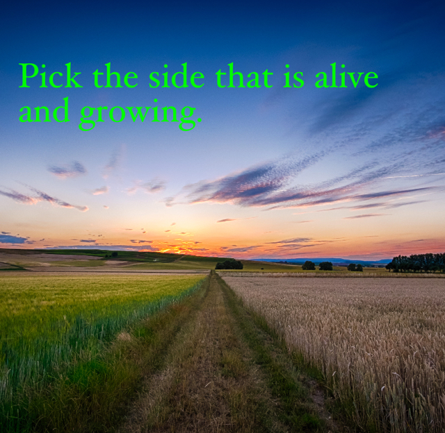 Pick the side that is alive and growing.