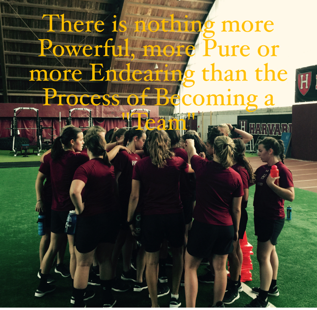 "There is nothing more Powerful, more Pure or more Endearing than the Process of Becoming a ""Team"""